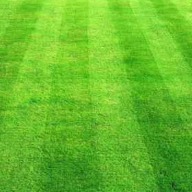 Lawn Care Service in Knoxville, TN, 37921