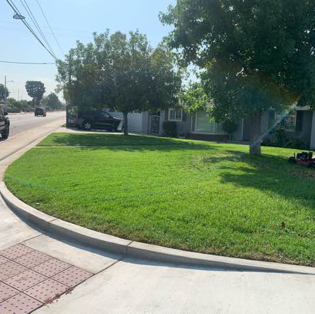Lawn Care Service in Beaumont, CA, 92223