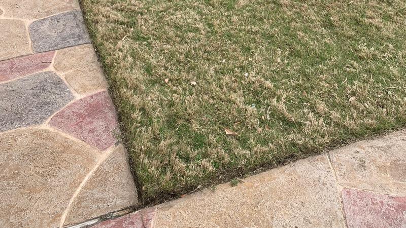 Lawn Care Service in Leander, TX, 78641