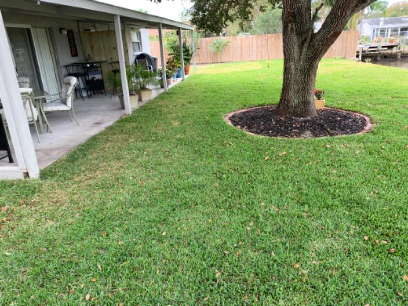 Lawn Care Service in Port Richey, FL, 34668