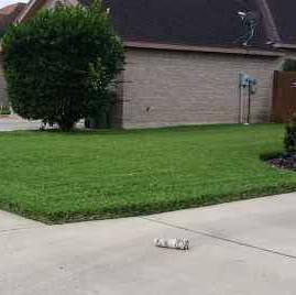 Lawn Care Service in Weslaco, TX, 78599