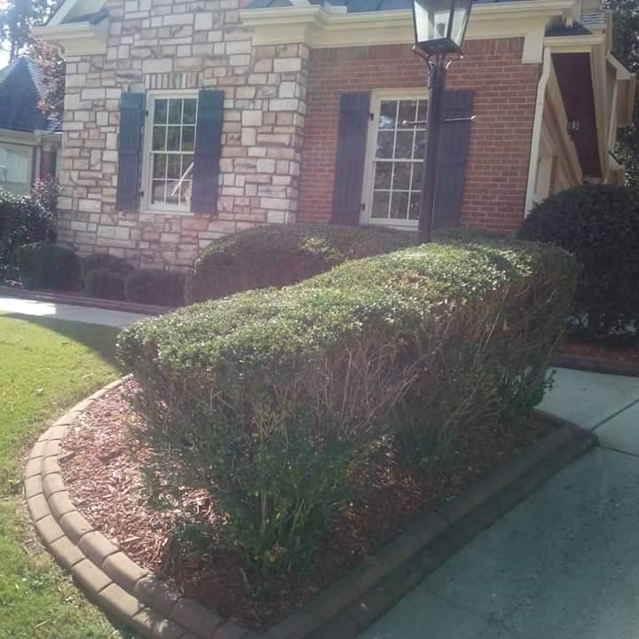 Lawn Care Service in Mc Donough, GA, 30253