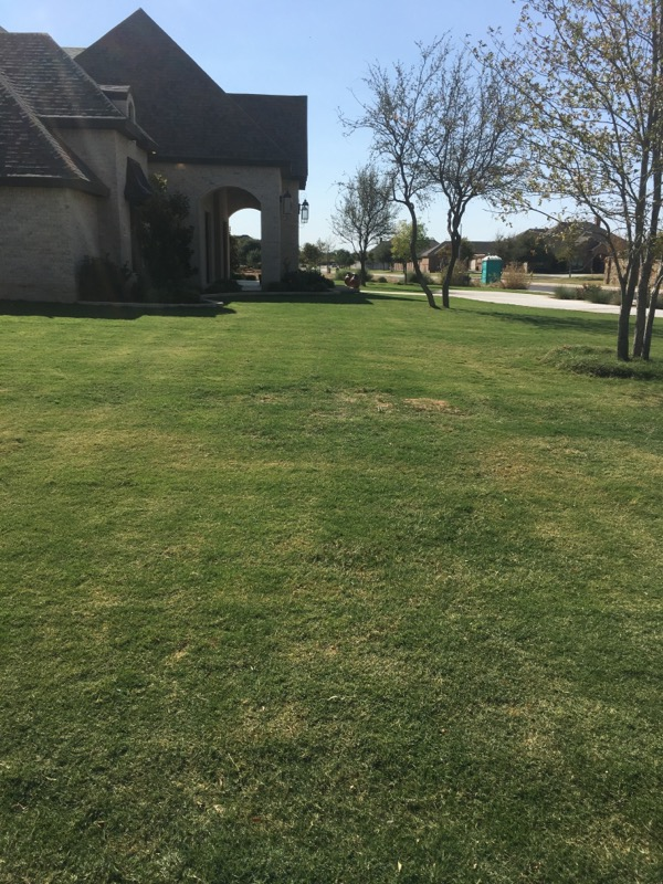 Lawn Care Service in Midland, TX, 79705