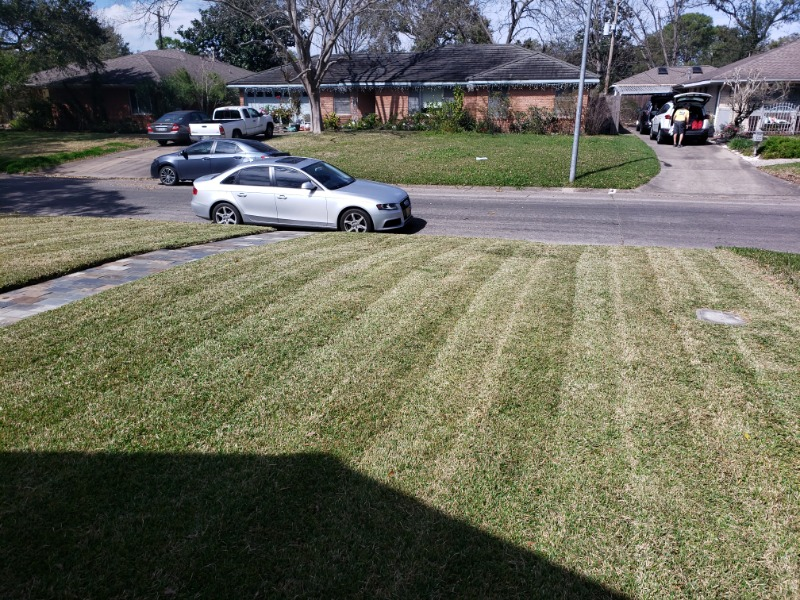 Lawn Care Service in Spring, TX, 77338