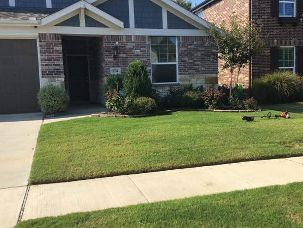 Lawn Care Service in Carrollton, TX, 75006