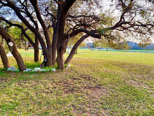 Lawn Care Service in Killeen, TX, 76543