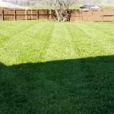 Lawn Care Service in Clarksville, TN, 37043