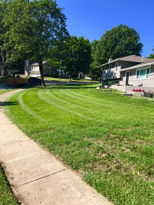 Lawn Care Service in Olathe, KS, 66061