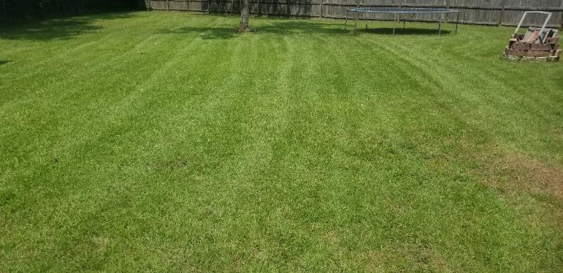 Lawn Care Service in Pensacola, FL, 32505