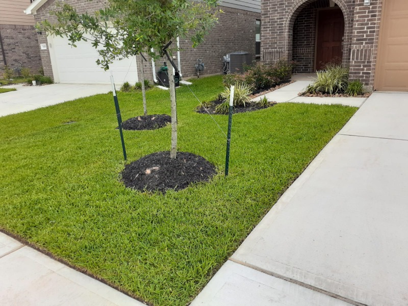 Lawn Care Service in Katy, TX, 77449