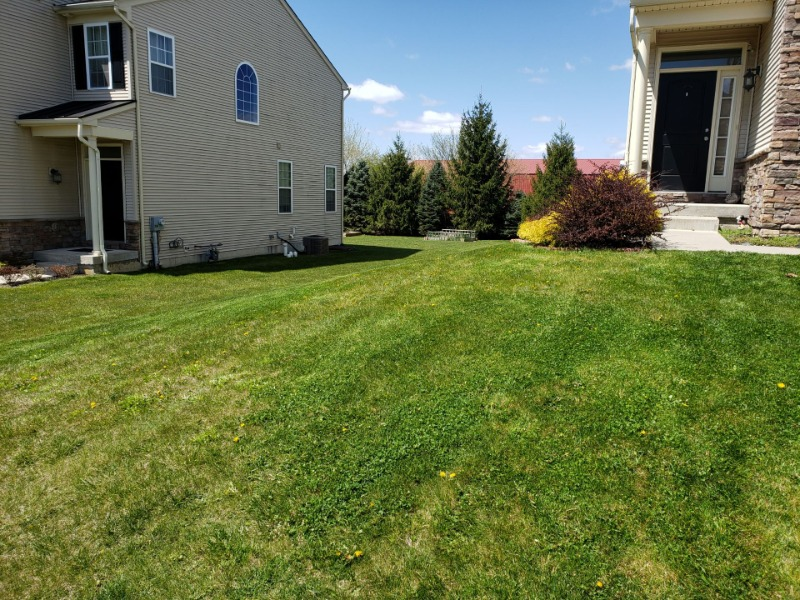 Lawn Care Service in Macungie, PA, 18062