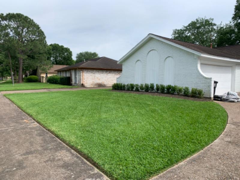 Lawn Care Service in Houston, TX, 77075