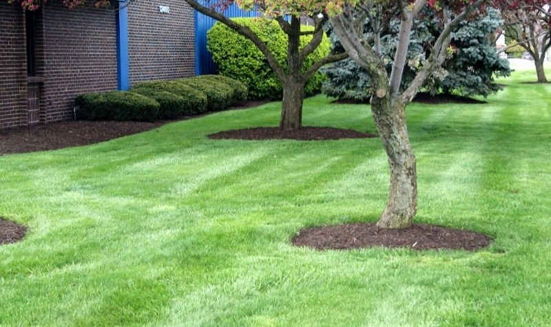 Lawn Care Service in Nashville, TN, 37049