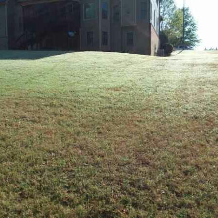 Lawn Care Service in Dallas, GA, 30157