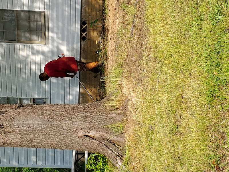 Lawn Care Service in Tyler, TX, 75703
