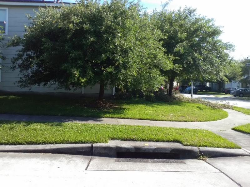 Lawn Care Service in Conroe, TX, 77385