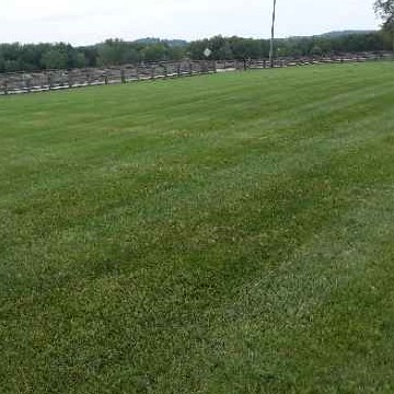 Lawn Care Service in Bowling Green, KY, 42103