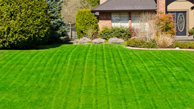 Lawn Care Service in Valley Park, MO, 63088