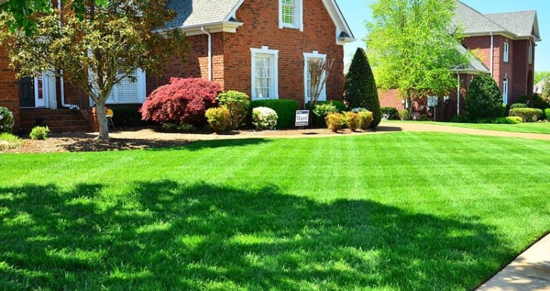 Lawn Care Service in Fort Wayne, IN, 46805