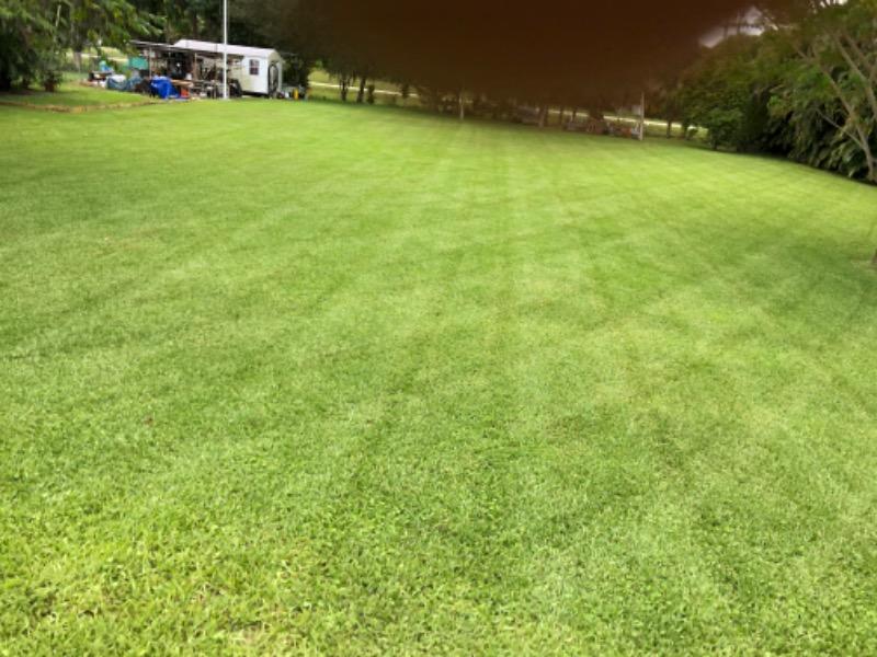 Lawn Care Service in Plantation , FL, 33313