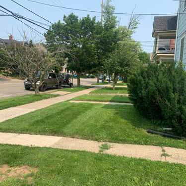 Lawn Care Service in Kalamazoo, MI, 49048