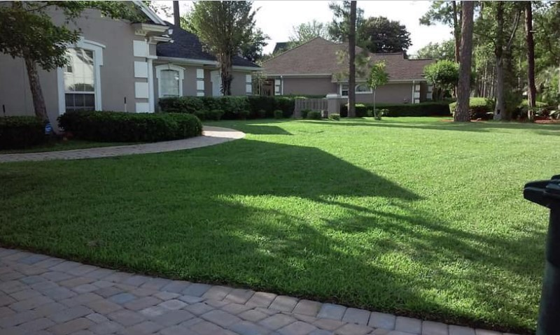 Lawn Care Service in Zephyrhills West, FL, 33541