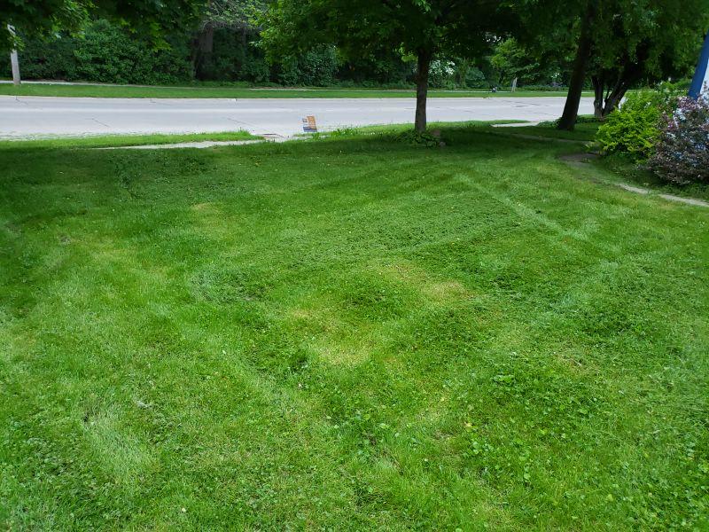 Lawn Care Service in Cedar Rapids, IA, 52405