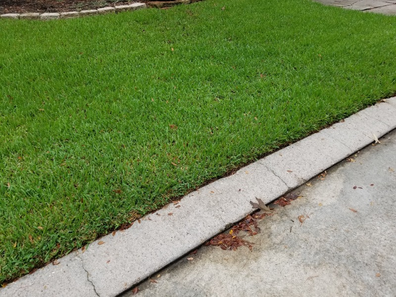 Lawn Care Service in The Woodlands, TX, 77381