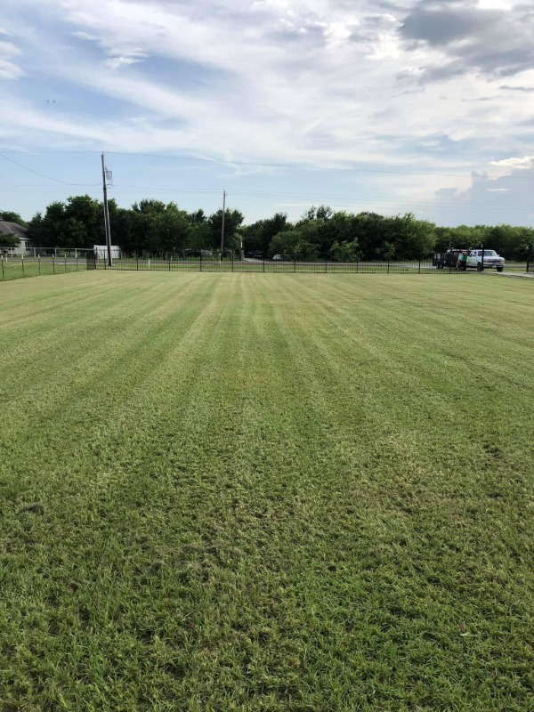 Lawn Care Service in Houston, TX, 77084