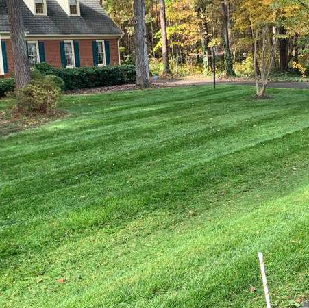 Lawn Care Service in Richmond City, VA, 23224