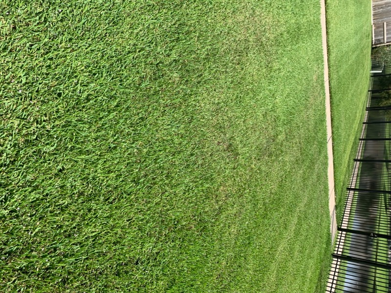 Lawn Care Service in Spring, TX, 77379