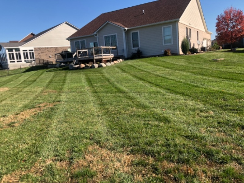 Lawn Care Service in Indianapolis, IN, 46236
