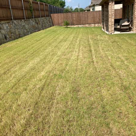 Lawn Care Service in Dallas, TX, 75237