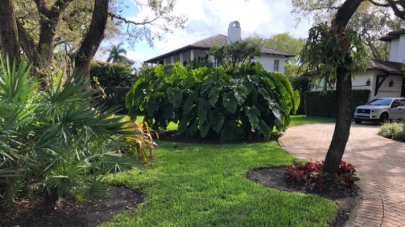 Lawn Care Service in Homestead, FL, 33033