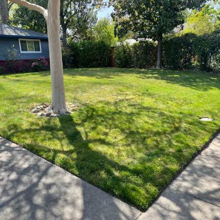 Lawn Care Service in Sacramento, CA, 95815