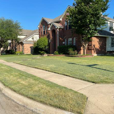 Lawn Care Service in Princeton, TX, 75407