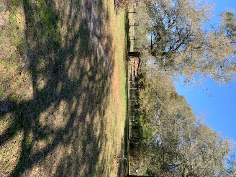 Lawn Care Service in Newberry, FL, 32669