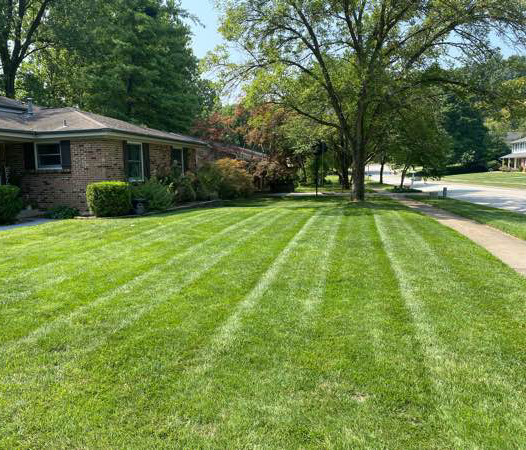 Lawn Care Service in Saint Charles, MO, 63301