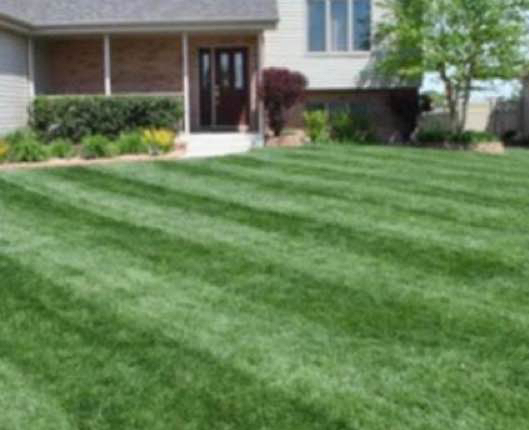 Lawn Care Service in Greensboro, NC, 27405