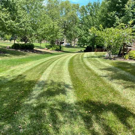 Lawn Care Service in Blue Springs, MO, 64014