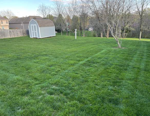 Lawn Care Service in Kansas City, MO, 64154