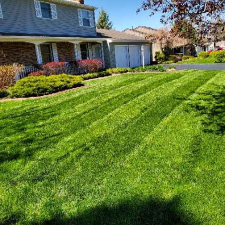 Lawn Care Service in Orchard Park, NY, 14127