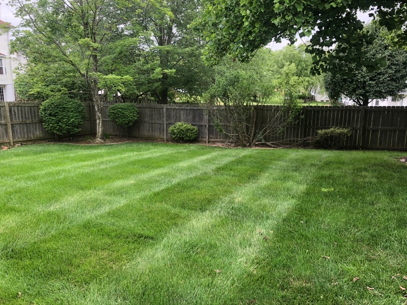 Lawn Care Service in Saint Charles, MO, 63304