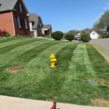 Lawn Care Service in Knoxville, TN, 37931