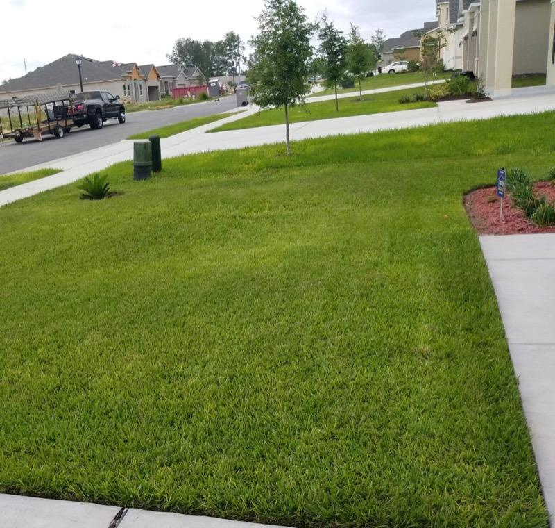 Lawn Care Service in Apopka, FL, 32703