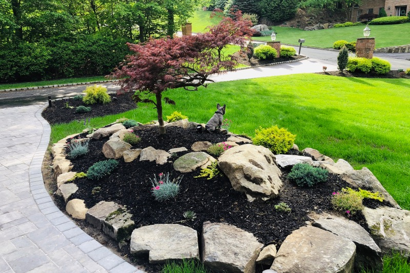 Lawn Care Service in Fort Worth, TX, 76104