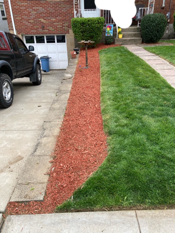 Lawn Care Service in Pittsburgh, PA, 15206