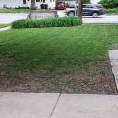 Lawn Care Service in Rantoul, IL, 61822