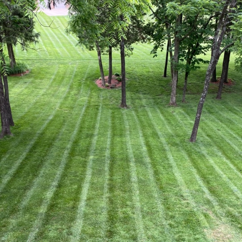 Lawn Care Service in Louisville, KY, 40229
