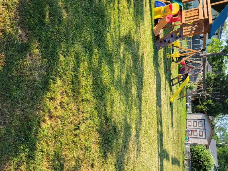 Lawn Care Service in Green Bay, WI, 54311